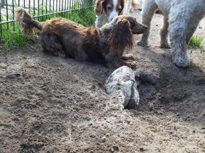 Lekker kuilen graven